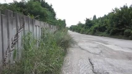 ПЛЕВЕН. Лятна разходка из любимия град /част 7/.