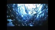 Make A Wave Official Music Video (full) Demi Lovato and Joe Jonas