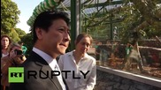 Russia: Meet the new guests of Leningrad Zoo: two Japanese macaque monkeys
