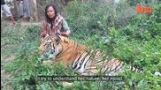 Удивително! Човек приятел с тигрите!