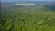 Няколко факти за Амазония