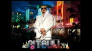 Pitbull - Juice Box / Rebelution 2009 /