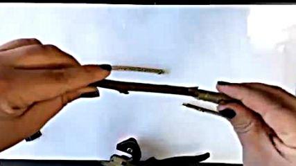 Ножица за ашладисване Premium