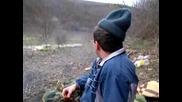 Любчето в гората