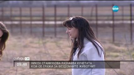 Никол Станкулова разлайва кучетата
