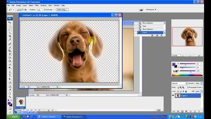 Премахване на фона на Снимка с Фотошоп