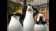 The Penguins of Madagascar - All Choked Up Сезон 1 Епизод 13 hq