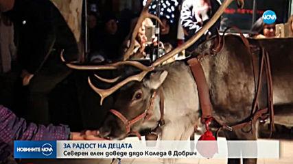 Елен от Лапландия доведе Дядо Коледа при децата в Добрич