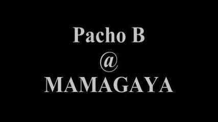 Mamagaya Pacho B