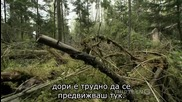 1/2 Радиоактивни Вълци (2011) * Бг Субтитри * Pbs Nature - Radioactive Wolves
