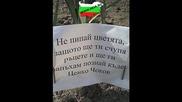 Само в България ! seir.bg
