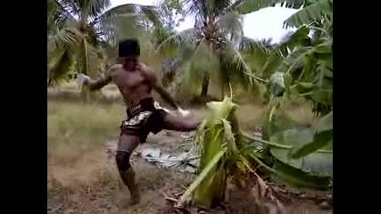 Buakaw kick