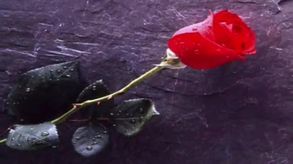 Tom Jones - Rainin' In My Heart - Prevod