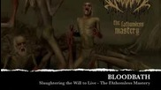 The Fathomless Mastery - Slaughtering the Will to Live