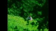 Depeche Mode - Enjoy The Silence(превод)