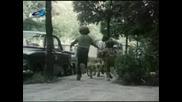 Българският филм Куче в чекмедже (част 2)