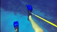 Този гмуркач оцелява при среща с опасна акула и разполага с видео, за да го докаже