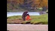няма такава мечка...cruel