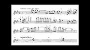 Паганини - Концерт за цигулка и оркестър №3 част2