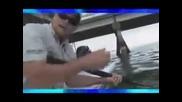 лов на голяма риба