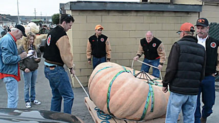 California gourd growers size each other up for pumpKING title