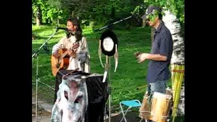 Музиканти В Парка