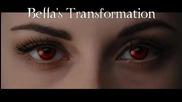 Bella Cullen's Transformation (hd)