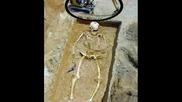 12 - Метров Скелет На Човек.възможно Ли Е?
