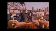 Mental As Anything - Rock `n` Roll Music (1988)