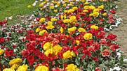 Варна - Морската Градина / Varna - Sea Garden 007
