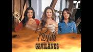 Angela Maria Forero - Sobre fuego (pasion de gavilanes)
