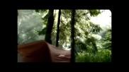 Chi Coltrane - Let it Ride