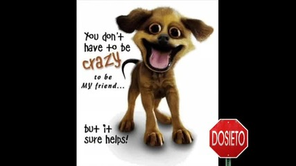 Най - смешните кучета на планетата! 100% смях