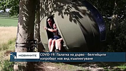 COVID-19:Палатка на дърво - белгийците изпробват нов вид къмпингуване