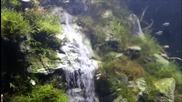 Подводен водопад в аквариум - истинска красота