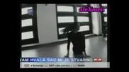 Dragana Mirkovic - Poslednje Vece[превод )