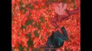 Gundam 00 Season 2 - Trust You Ed