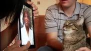 Котка расист
