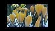 Добре дошла моя първа пролет!