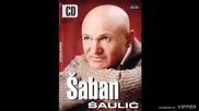 Saban Saulic - Volim s drustvom da popijem - (Audio 2005)