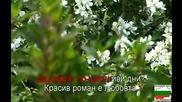 Красив Роман Е Любовта - Karaoke