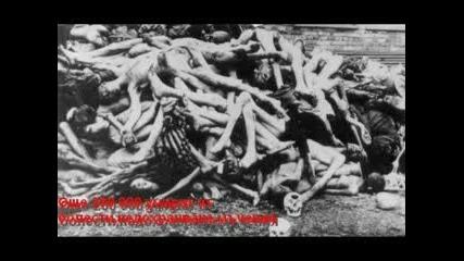 Аушвиц - Евреи, Поляци И Цигани