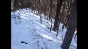 Downhill - трасе в Троян само за сняг
