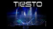 Tiesto House // Wasted