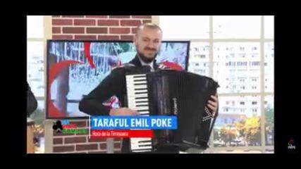 Фолк - АКОРДОН