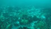 Гмуркане Бурроу 2 на Остров Ман - Diving off the Burroo Ii in Iom
