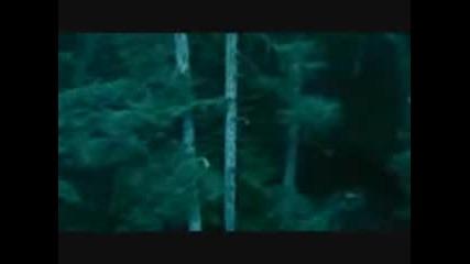 Twilight - Save Me