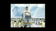 Калеко Алеко в Антарктида