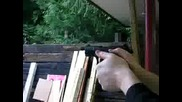 Стрелба С Walter P22