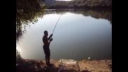 риболов на голям толстолоб